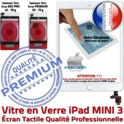 Tactile Home A1599 Mini3 Verre Adhésif Nappe A1600 Ecran Bouton Filtre Caméra Vitre Monté 3 Oléophobe iPad Tablette Réparation MINI Fixation Blanc