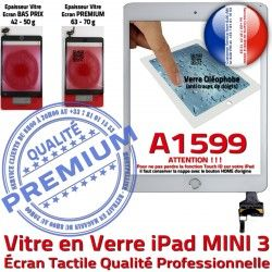 Mini3 Ecran Tablette Oléophobe Verre A1599 Home Fixation Adhésif Filtre Tactile Blanc iPad Nappe Vitre Bouton Monté Réparation Caméra
